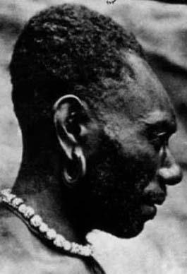 Etude sur prise de tête de nos ancêtres - Page 2 CraneNouvellesHebrides1